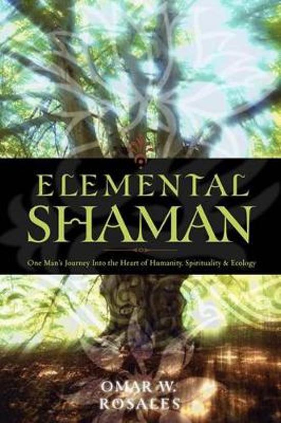 Elemental Shaman