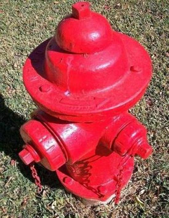 Fire Hydrant Notebook Large Size 8.5 X 11 Ruled 150 Pages Softcover