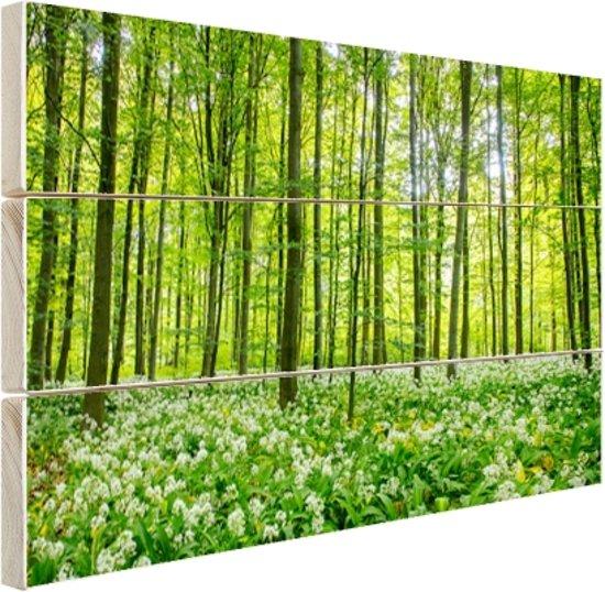 FotoCadeau.nl - Groene bomen in het bos Hout 80x60 cm - Foto print op Hout (Wanddecoratie)