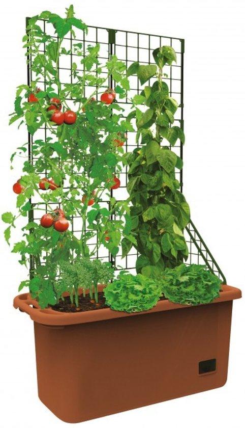 Plantenbak Met Waterreservoir.Bol Com Mobiele Bloembak Met Klimrek En Waterreservoir