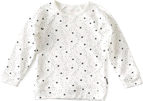 Little Label - raglan sweater meisjes - off white bird AOP