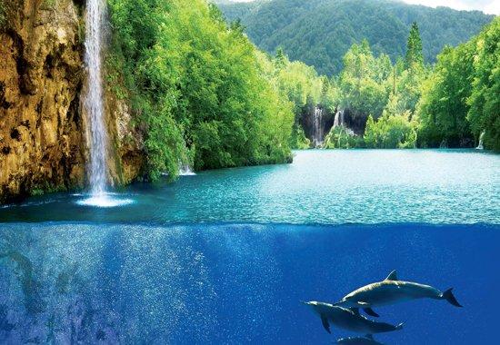 Fotobehang Waterfall Sea Nature Dolphins   XL - 208cm x 146cm   130g/m2 Vlies