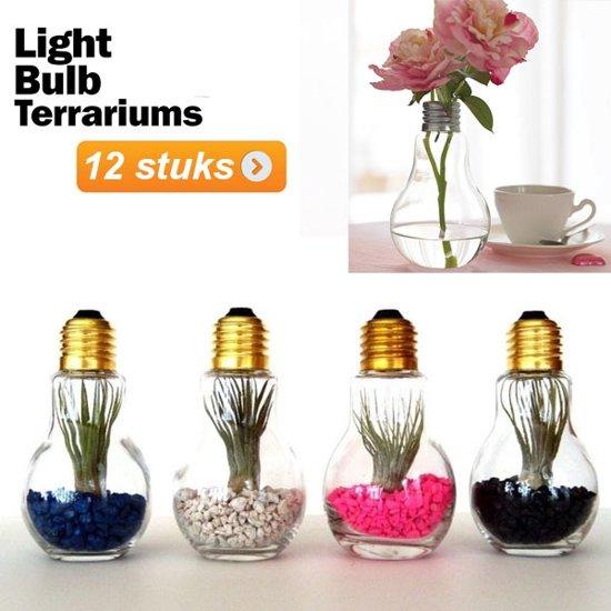 Gloeilamp Terranium vaasjes / Zout en Peper vaasjes - 12 stuks| Pride Kings®