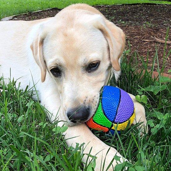 Lanco hondenspeelgoed Regenboog Bal