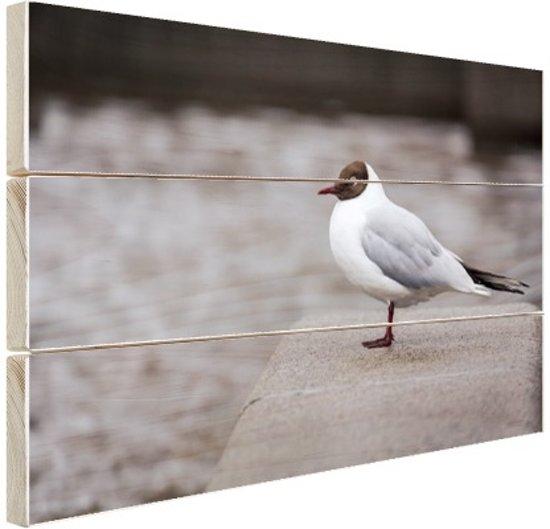 Meeuw Hout 160x120 cm - Foto print op Hout (Wanddecoratie) XXL / Groot formaat!