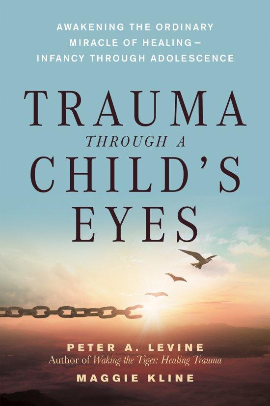 Boek cover Trauma Through A Childs Eyes van Maggie Kline (Paperback)