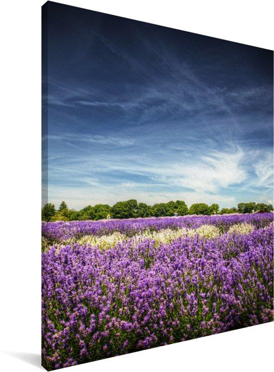 Lavendels in de natuur Canvas 120x160 cm - Foto print op Canvas schilderij (Wanddecoratie woonkamer / slaapkamer) XXL / Groot formaat!