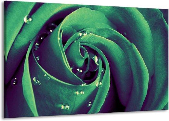 Canvas schilderij Roos | Groen, Zwart | 140x90cm 1Luik