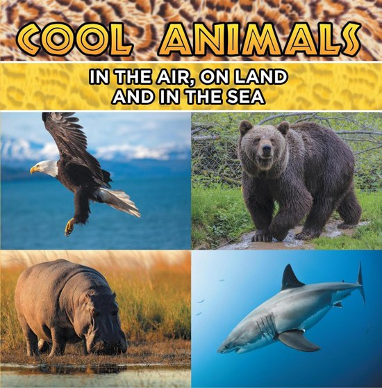 Image of: Drawings Cool Animals In The Air On Land And In The Sea Bolcom Bolcom Cool Animals In The Air On Land And In The Sea ebook