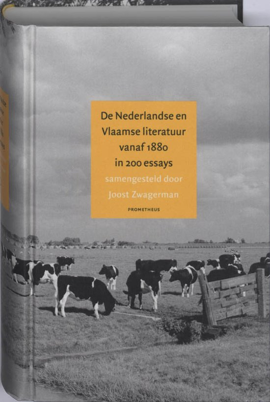 joost zwagerman essays