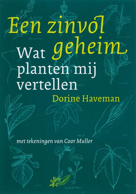 Een zinvol geheim - D. Haveman |