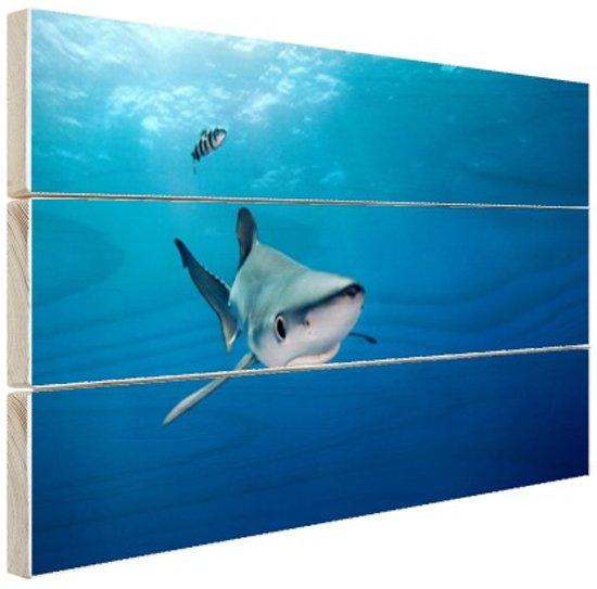 Grote blauwe haai Hout 80x60 cm - Foto print op Hout (Wanddecoratie)