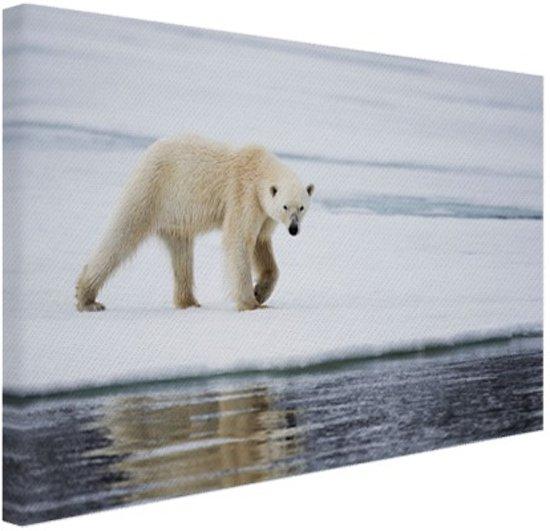 Ijsbeer op een winterdag Canvas 80x60 cm - Foto print op Canvas schilderij (Wanddecoratie)