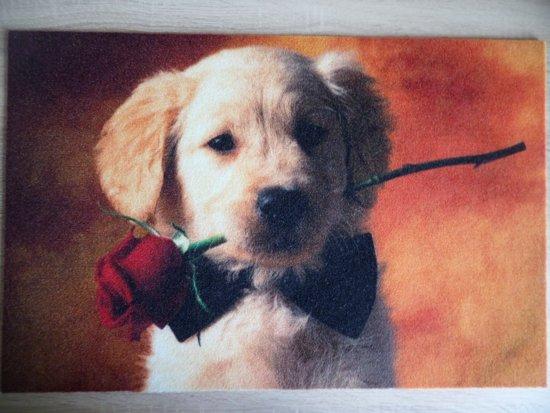 Deurmat 40x60 Puppy Roos