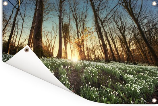 Zonnestralen op sneeuwklokjes Tuinposter 60x40 cm - klein - Tuindoek / Buitencanvas / Schilderijen voor buiten (tuin decoratie)