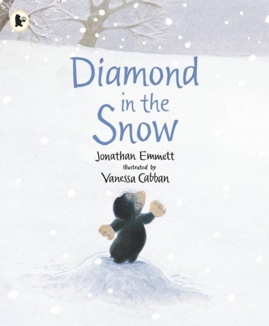 Boek cover Diamond in the Snow van Jonathan Emmett (Paperback)