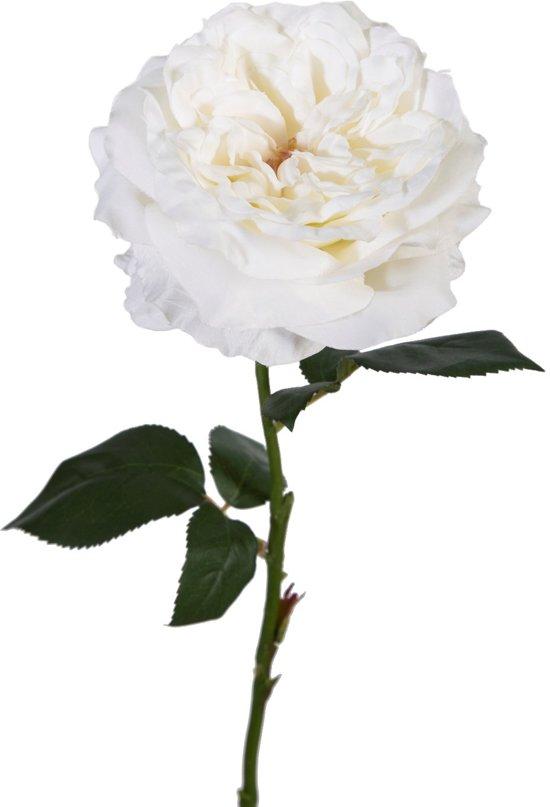 Viv! Home Luxuries - Engelse roos - zijden bloem - wit - topkwaliteit