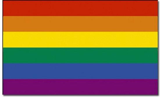 Regenboog vlag 90 x 150 cm