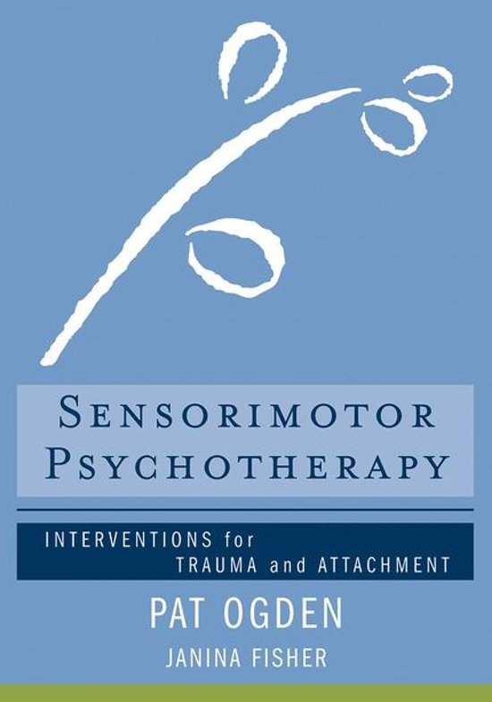 Afbeelding van Sensorimotor Psychotherapy: Interventions for Trauma and Attachment (Norton Series on Interpersonal Neurobiology)