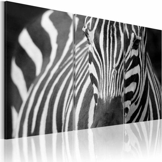 Schilderij - Mevr. Zebra, Zwart-Wit, 3luik