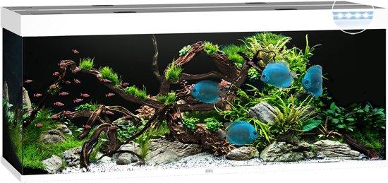 bol.com | Juwel Aquarium Rio 450 Led 151x51x66 cm Wit Ca. 450 L