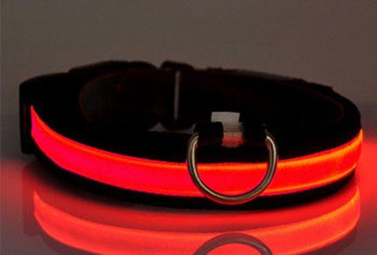 Hondenhalsband Met Licht : Bol led verlichte hondenhalsband rood maat xl veilig