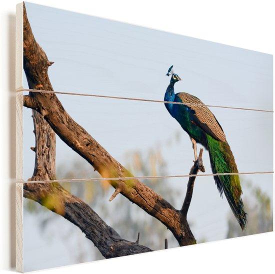 Blauwe pauw in een boom Vurenhout met planken 90x60 cm - Foto print op Hout (Wanddecoratie)