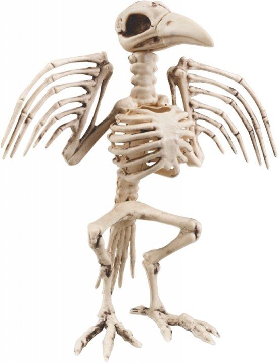 Skelet Voor Halloween.Halloween Plastic Decoratie Kraai Skelet Halloween Versiering