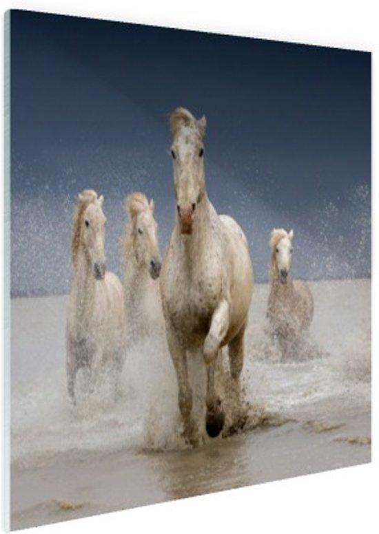 FotoCadeau.nl - Witte paarden in het water Glas 90x60 cm - Foto print op Glas (Plexiglas wanddecoratie)