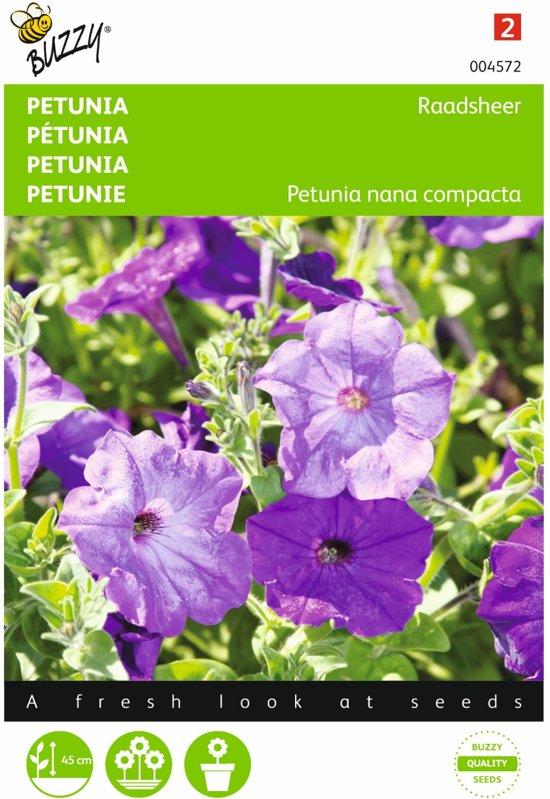Petunia Raadsheer - Petunia nana compacta - set van 8 stuks