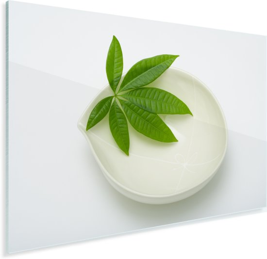 Groen blad van watercacao op een witte schotel Plexiglas 30x20 cm - klein - Foto print op Glas (Plexiglas wanddecoratie)