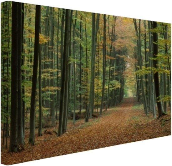 FotoCadeau.nl - Een bospad in de herfst Canvas 120x80 cm - Foto print op Canvas schilderij (Wanddecoratie)
