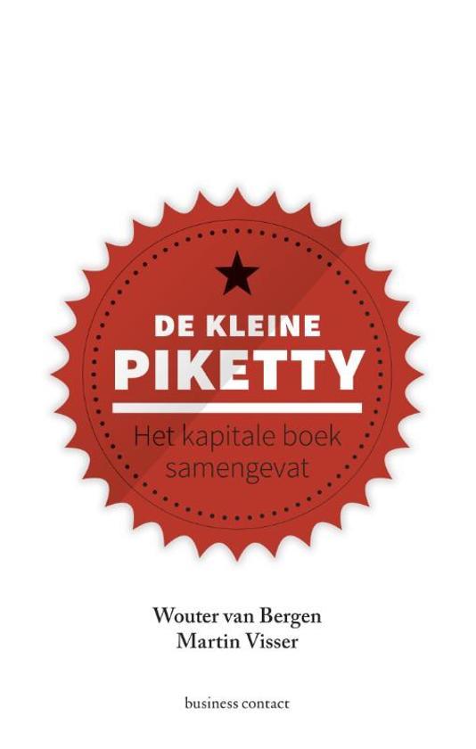 Boek cover De kleine Piketty van Wouter van Bergen (Paperback)
