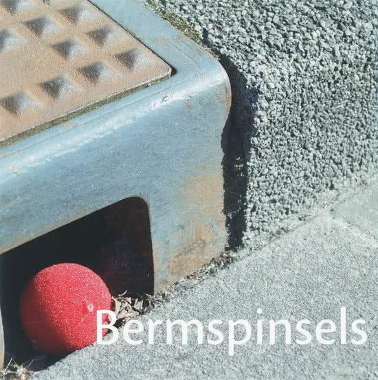Bermspinsels