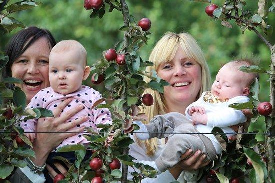 Minitree Appelboom Geboorteboom