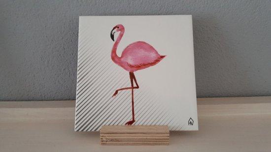 Flamingo In Huis : Villa flamingo met zwembad in fontein banda abou west huren