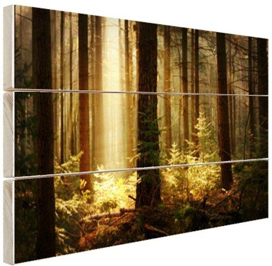 Bos met zonnestralen Hout 60x40 cm - Foto print op Hout (Wanddecoratie)