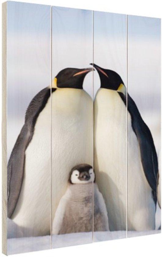 Pinguingezin  Hout 60x80 cm - Foto print op Hout (Wanddecoratie)