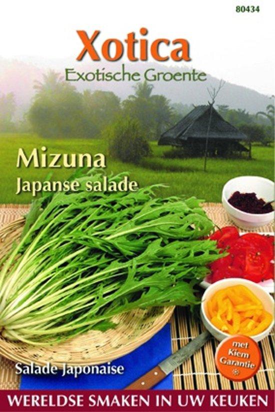 Buzzy® Xotica Mizuna