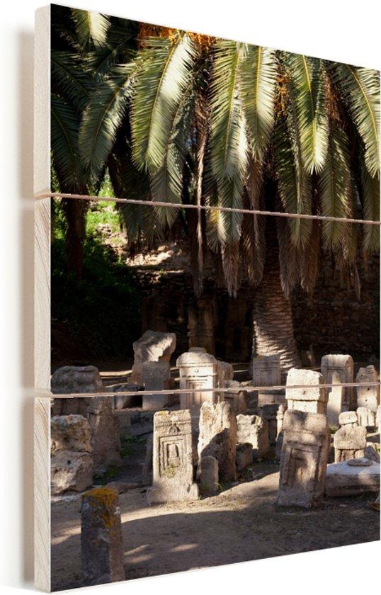 Romeinse begraafplaats bij Carthago in Tunesië Vurenhout met planken 40x60 cm - Foto print op Hout (Wanddecoratie)