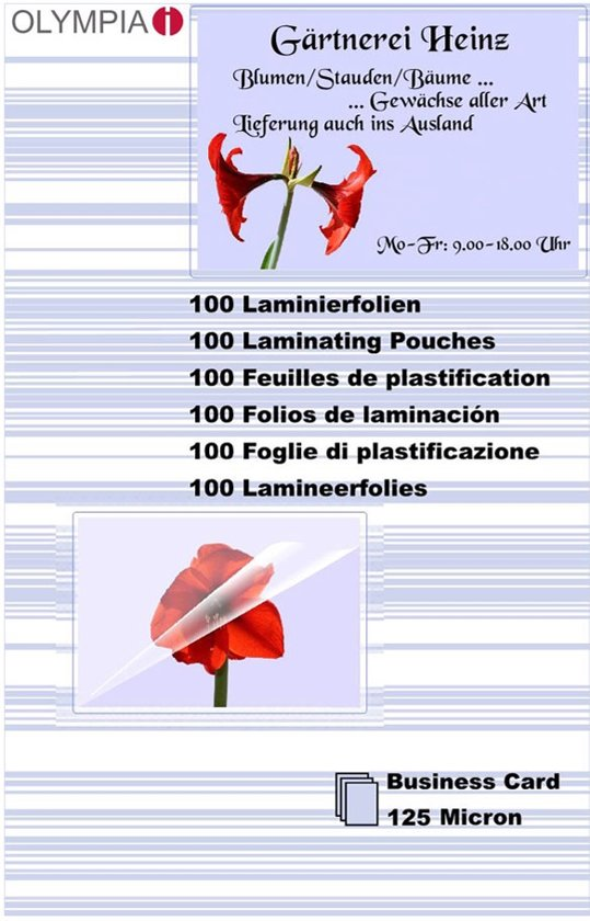1x100 Olympia Lamineerfolie Visitekaarten 125 micron 9179
