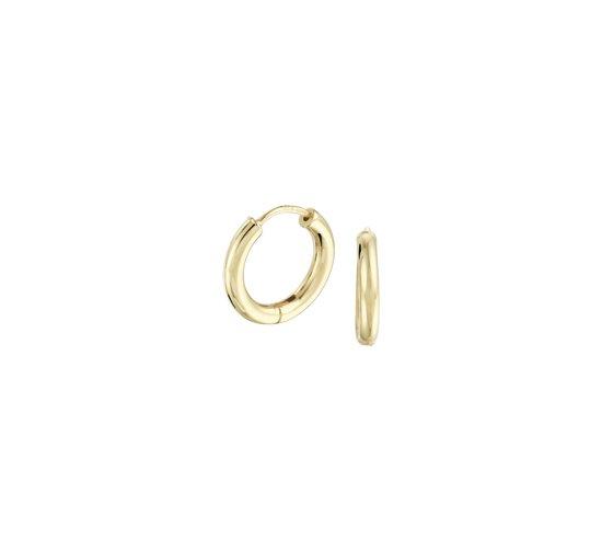 The Jewelry Collection klap-oorringen 2,5 mm Rond - Geelgoud (14 Krt.)