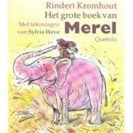 Het Grote Boek Van Merel