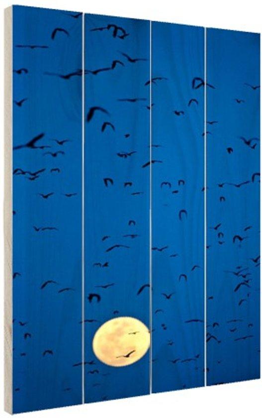 Vleermuizen voor volle maan Hout 60x80 cm - Foto print op Hout (Wanddecoratie)