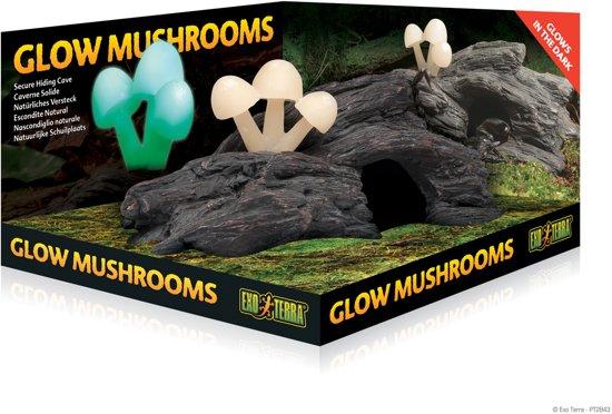 Exo Terra Schuilplaats Glow Mushrooms 23x14x10 cm Natuurlijk
