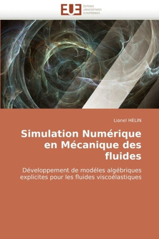 Simulation Numerique En Mecanique Des Fluides