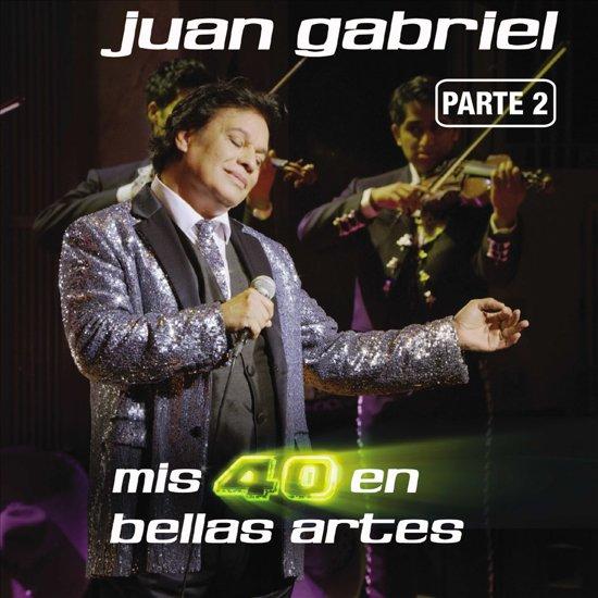 Mis 40 en Bellas Artes: En Vivo Desde Bellas Artes, Mexico 2013