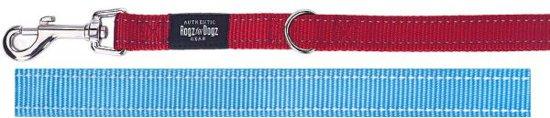 Rogz For Dogs Fanbelt Multipurpose Hondenriem - 20 mm x 1.6 m - Turquoise