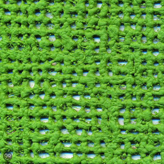 Tenttapijt 3 X 6.Bol Com Aerotex Tenttapijt 2 5x6 Meter Groen