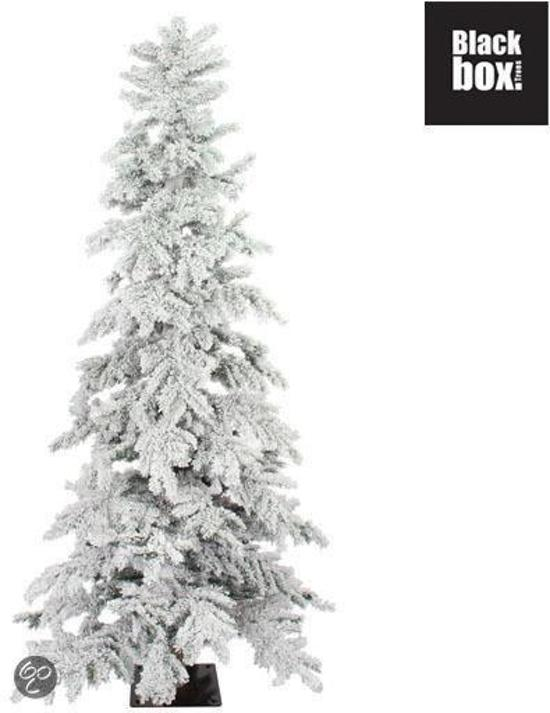 black box monterey spruce kunstkerstboom h305d150cm zonder verlichting